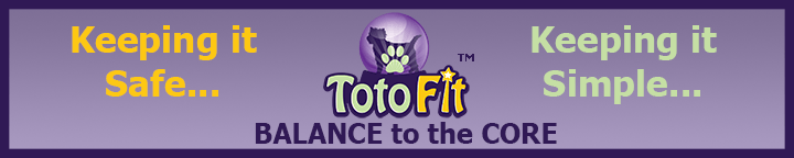 totofit-banner.png